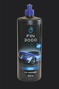 Fin 3000